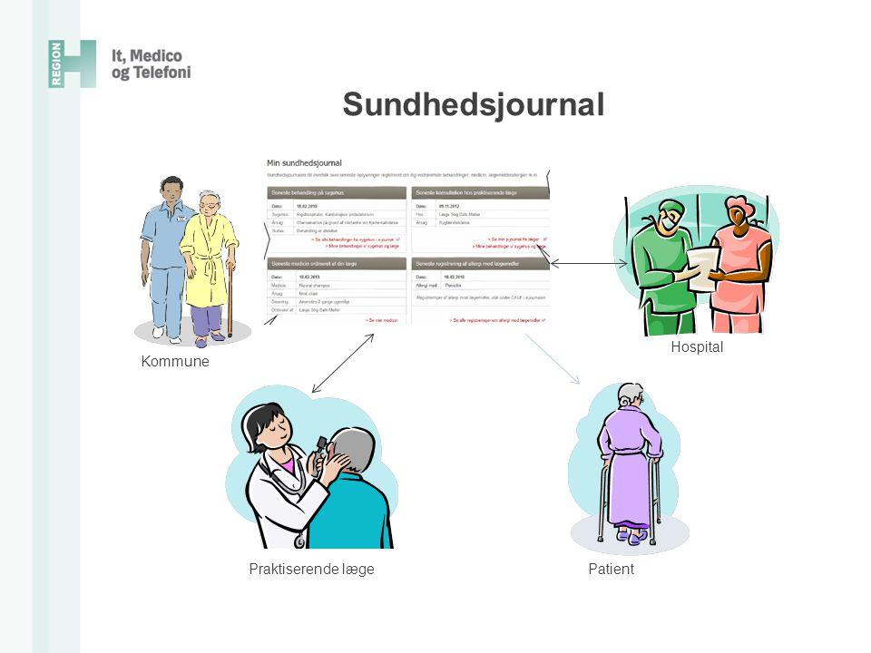 Sundhedsjournal Hospital Kommune Praktiserende læge Patient
