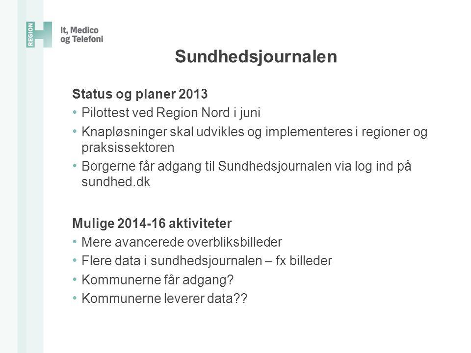 Sundhedsjournalen Status og planer 2013