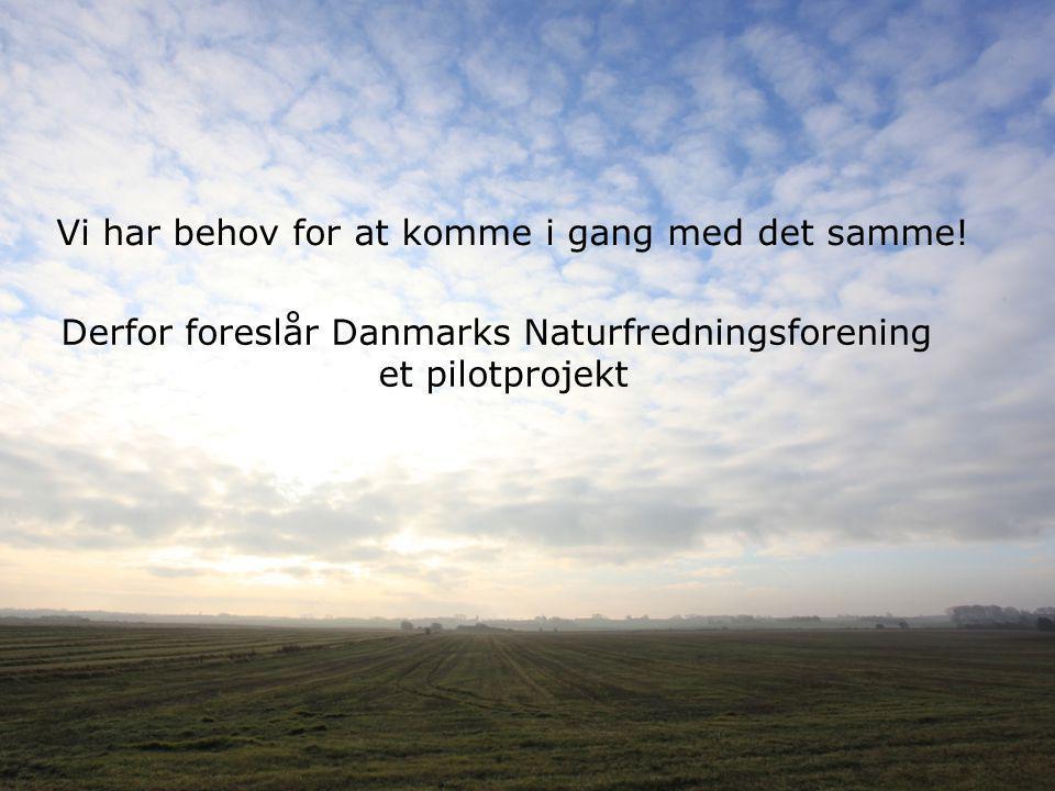Derfor foreslår Danmarks Naturfredningsforening