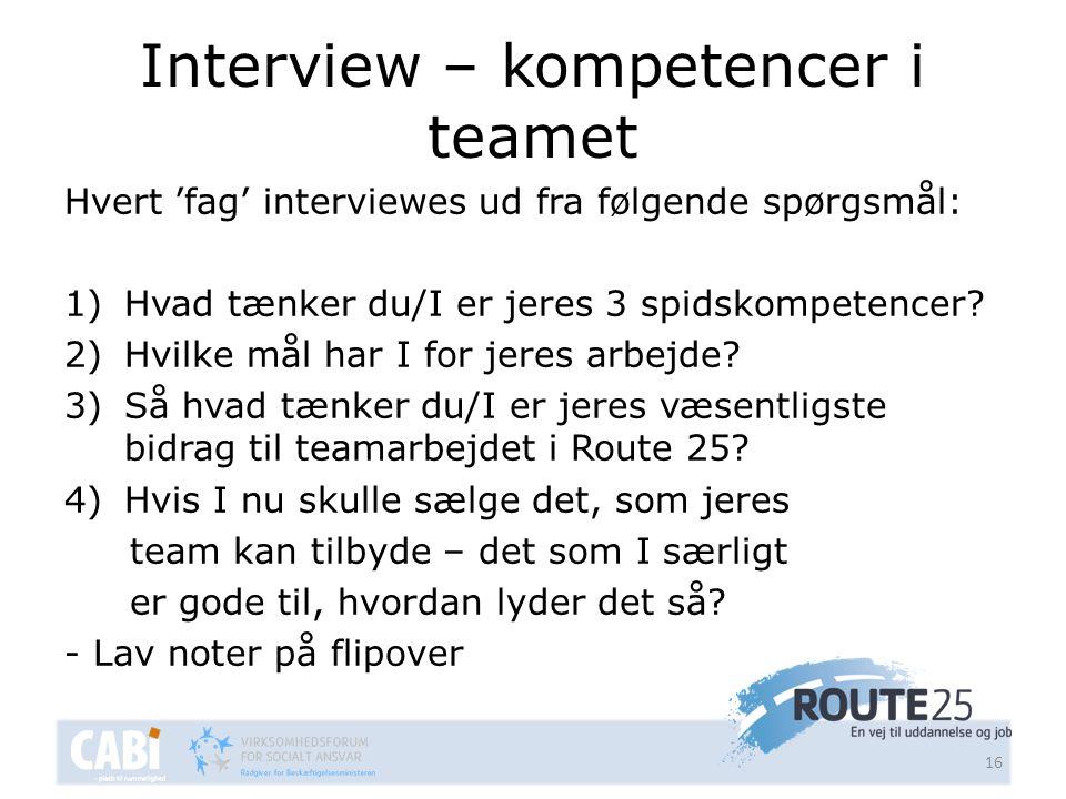 Interview – kompetencer i teamet