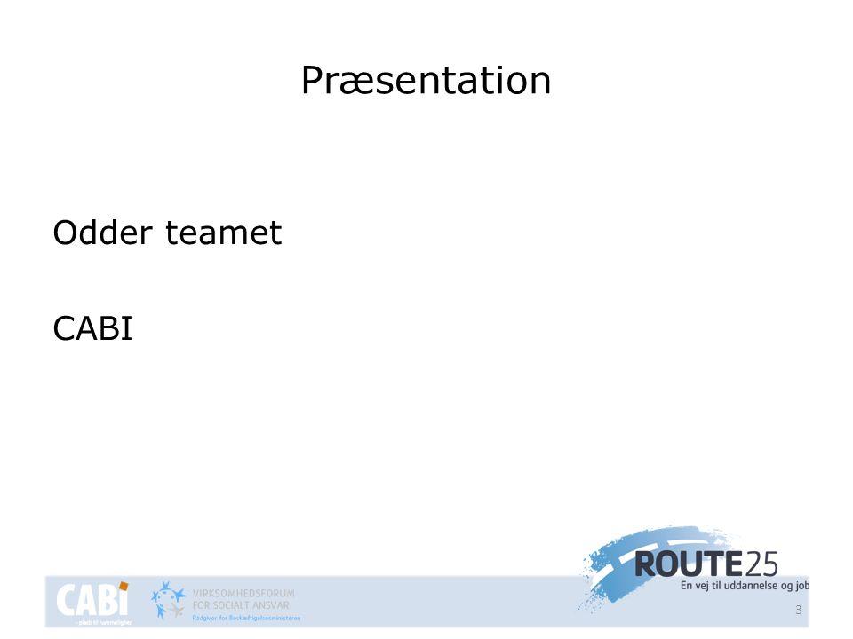 Præsentation Odder teamet CABI