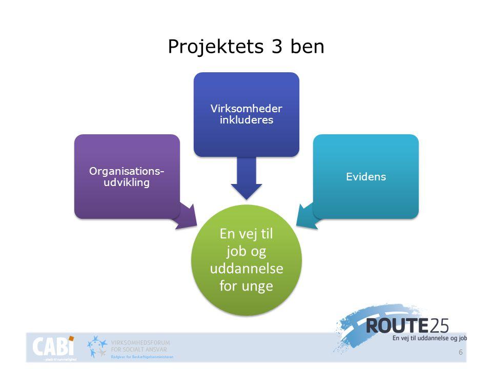 Projektets 3 ben En vej til job og uddannelse for unge