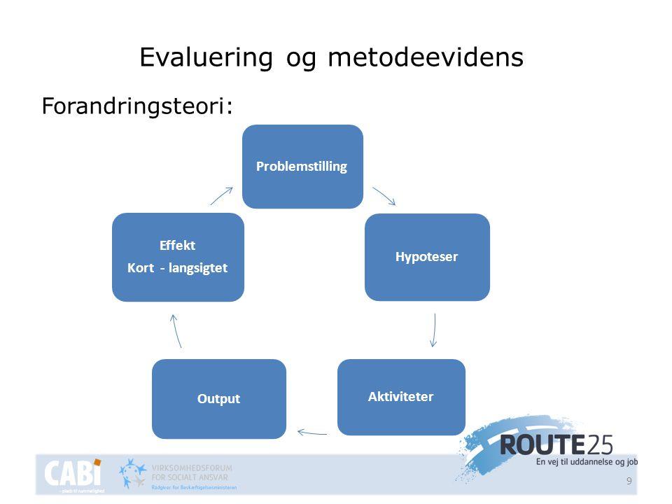 Evaluering og metodeevidens
