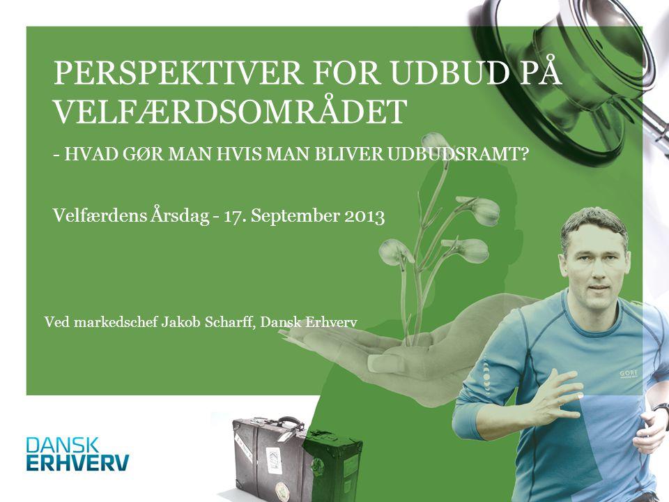 Velfærdens Årsdag - 17. September 2013