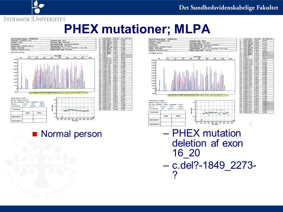 PHEX mutationer; MLPA PHEX mutation deletion af exon 16_20