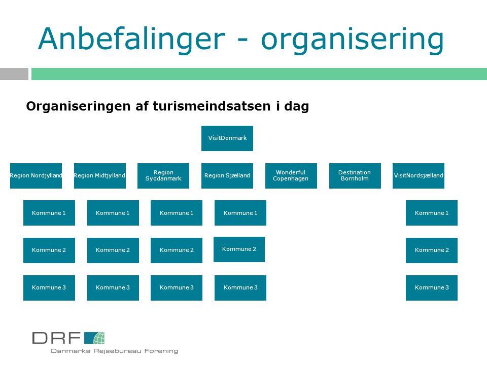 Anbefalinger - organisering