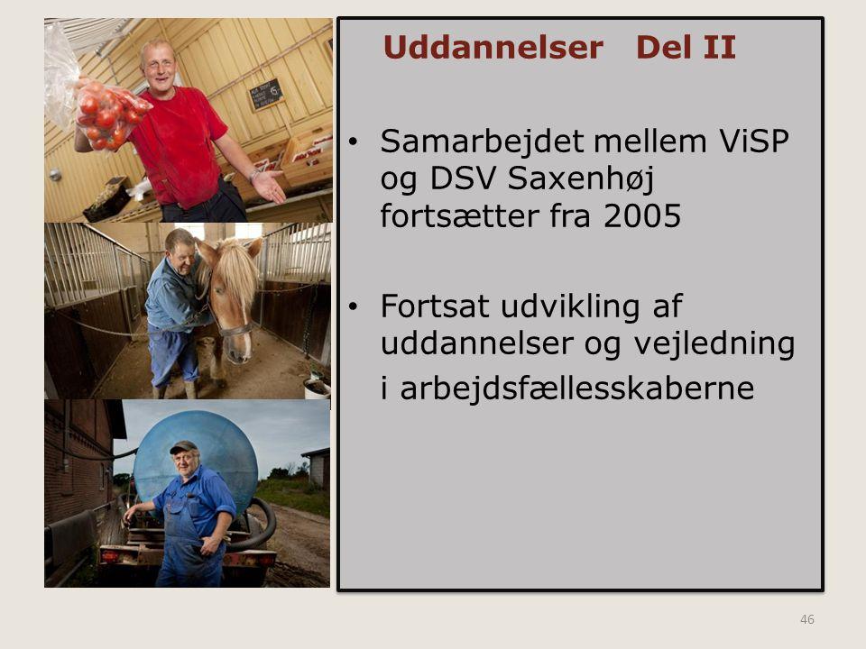 Uddannelser Del II Samarbejdet mellem ViSP og DSV Saxenhøj fortsætter fra 2005. Fortsat udvikling af uddannelser og vejledning.