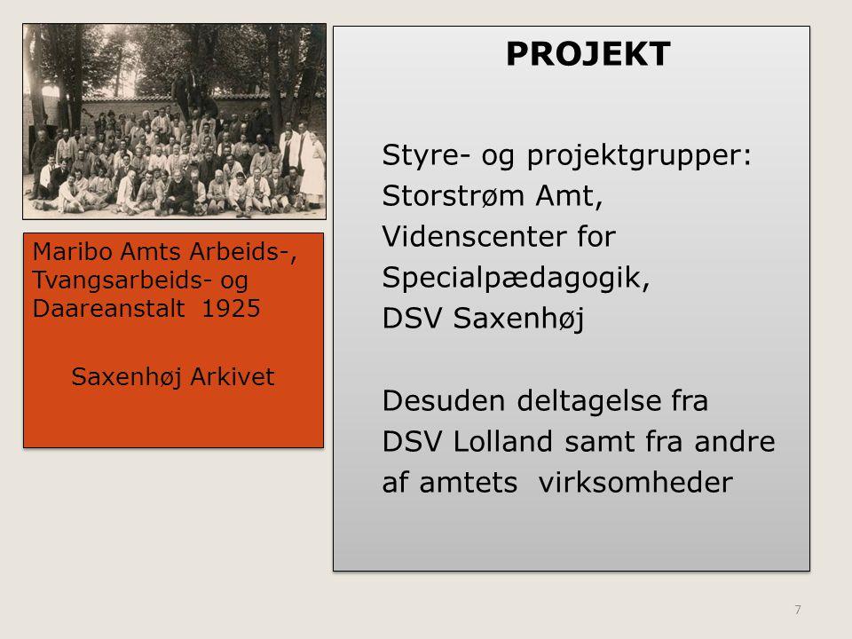 PROJEKT Styre- og projektgrupper: Storstrøm Amt, Videnscenter for