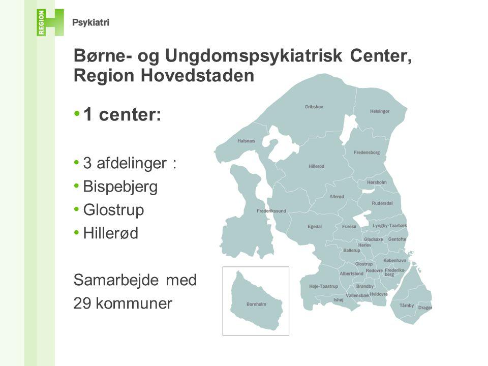 Børne- og Ungdomspsykiatrisk Center, Region Hovedstaden