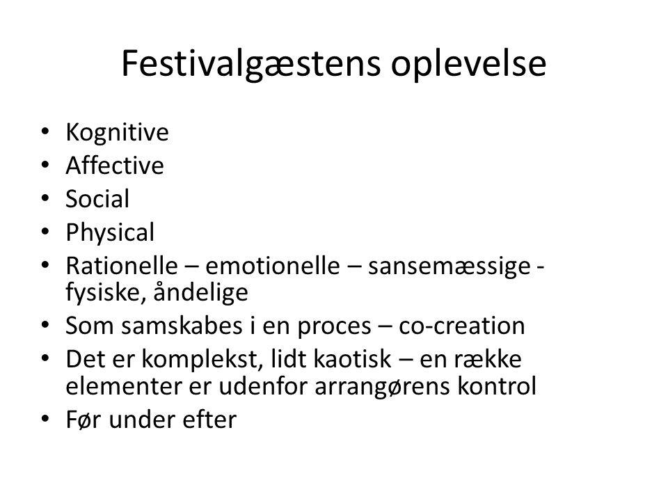 Festivalgæstens oplevelse