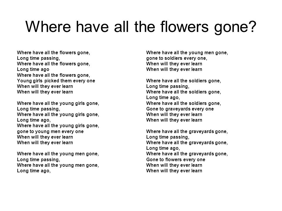 Where have all the flowers gone