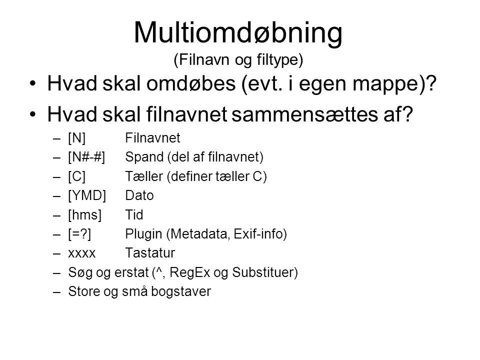 Multiomdøbning (Filnavn og filtype)