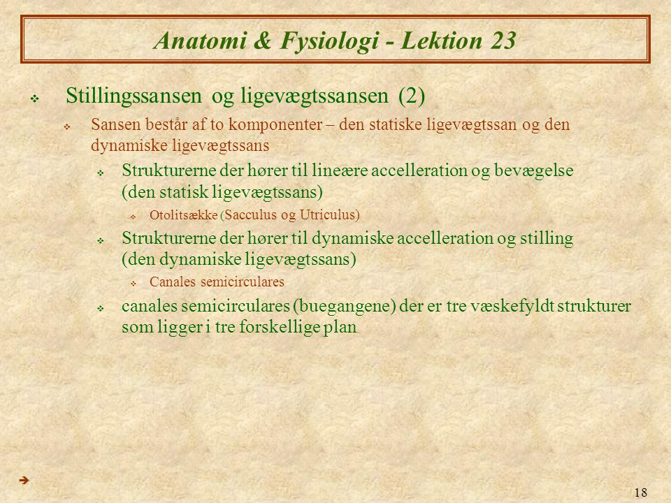 Anatomi & Fysiologi - Lektion 23