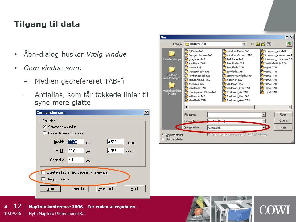 Tilgang til data Åbn-dialog husker Vælg vindue Gem vindue som:
