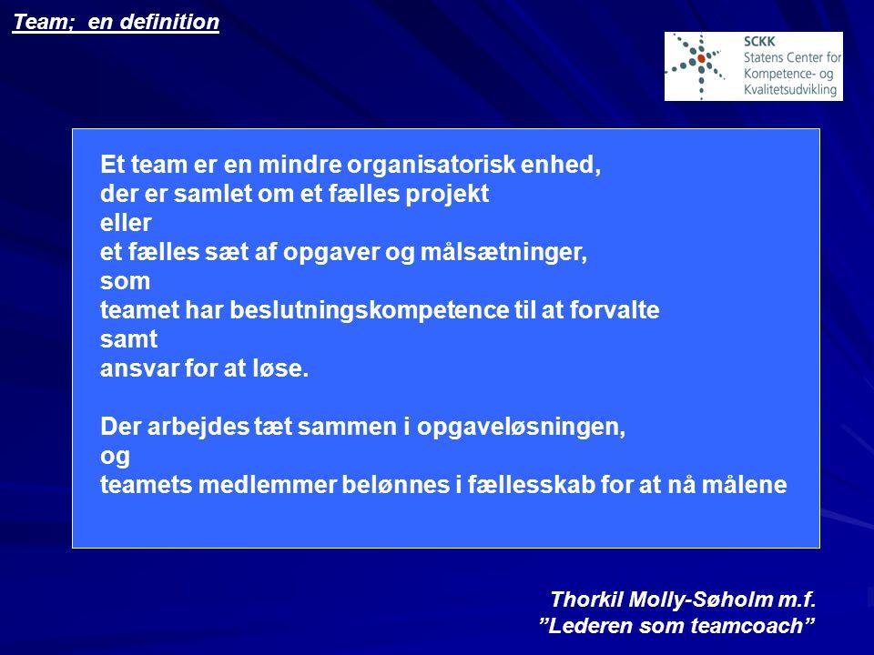 Et team er en mindre organisatorisk enhed,