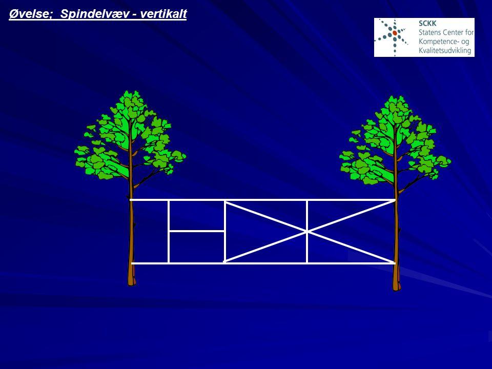 Øvelse; Spindelvæv - vertikalt