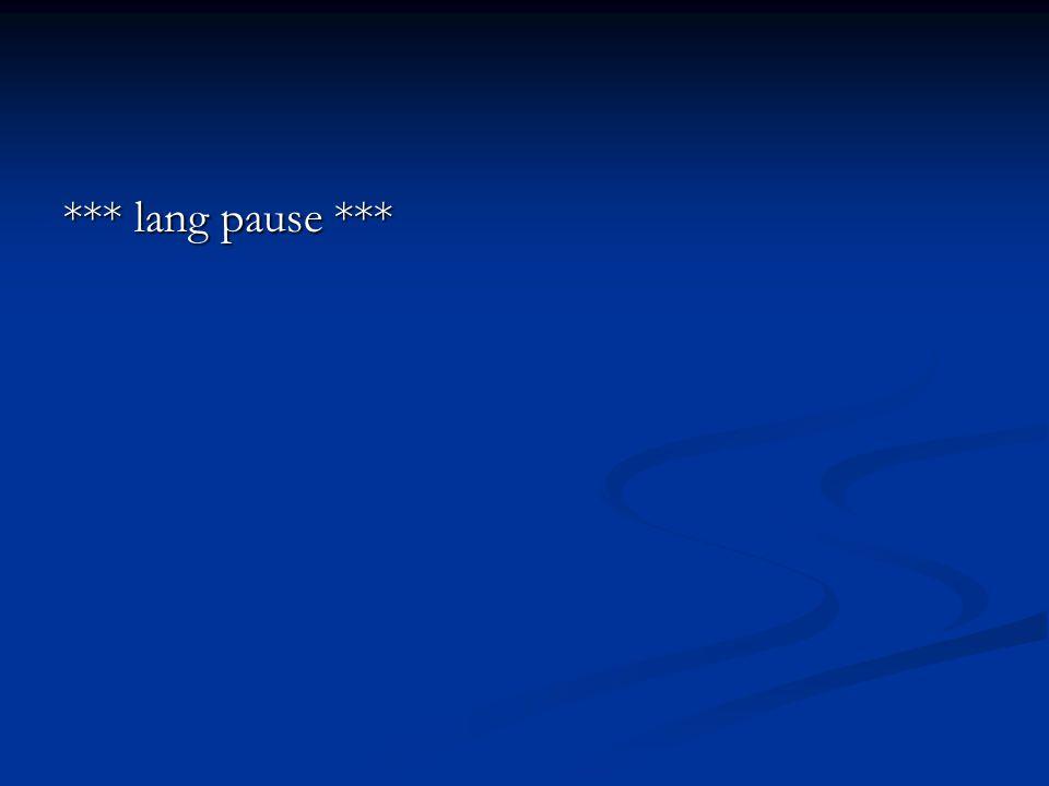 *** lang pause ***