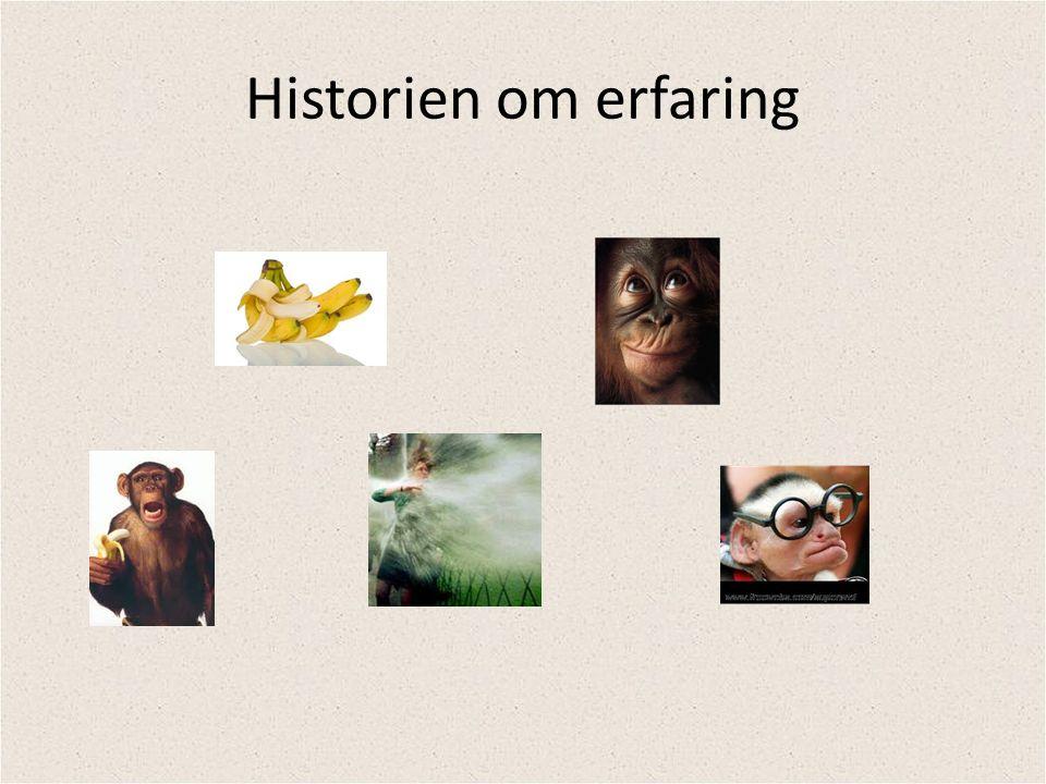 Historien om erfaring