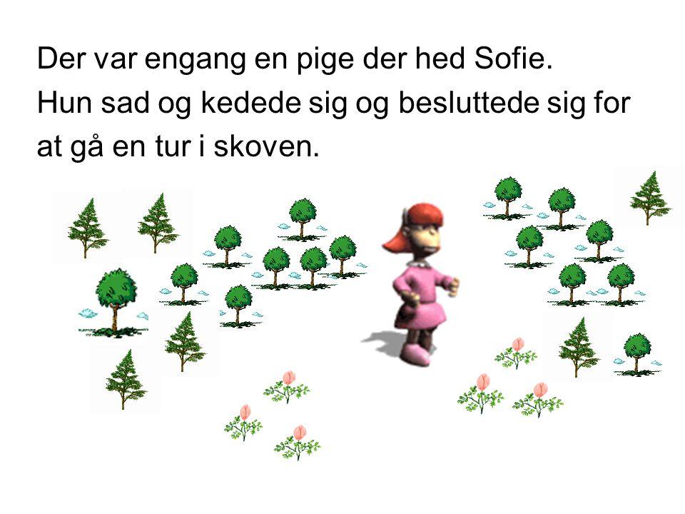 Der var engang en pige der hed Sofie.