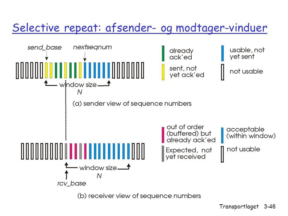 Selective repeat: afsender- og modtager-vinduer