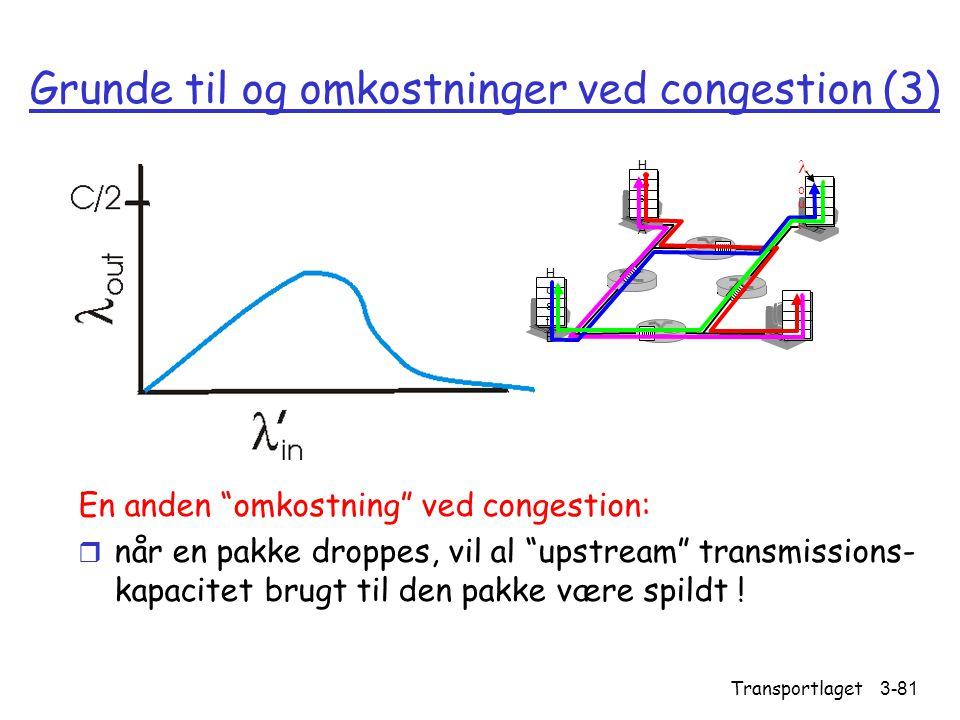 Grunde til og omkostninger ved congestion (3)