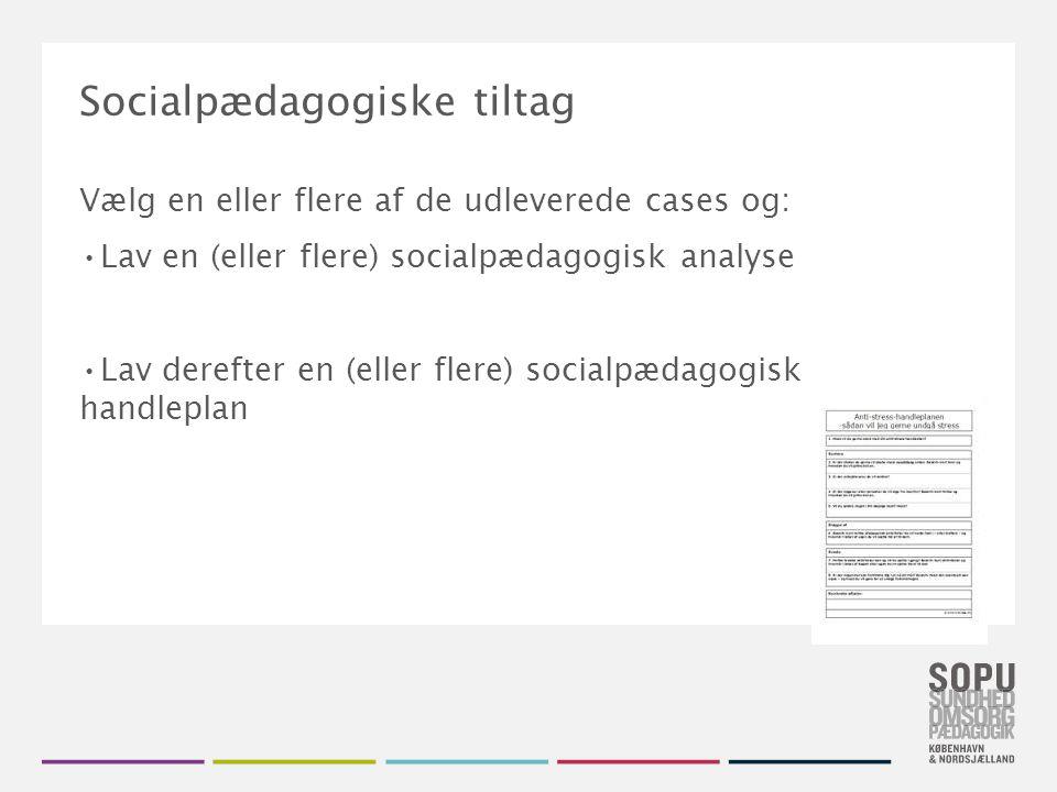 Socialpædagogiske tiltag