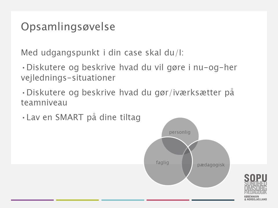 Opsamlingsøvelse Med udgangspunkt i din case skal du/I: