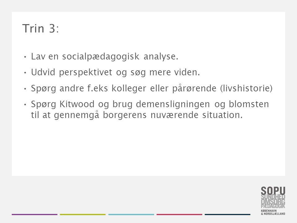 Trin 3: Lav en socialpædagogisk analyse.