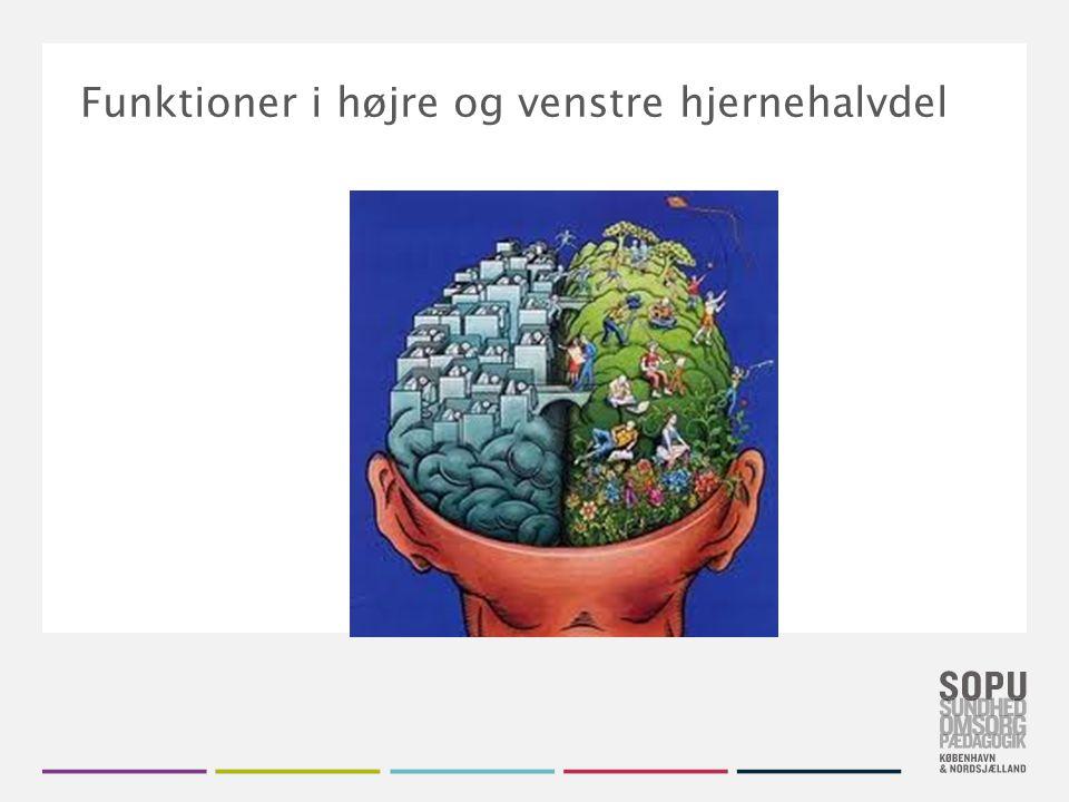 Funktioner i højre og venstre hjernehalvdel