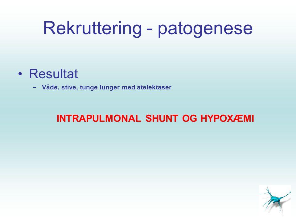 Rekruttering - patogenese