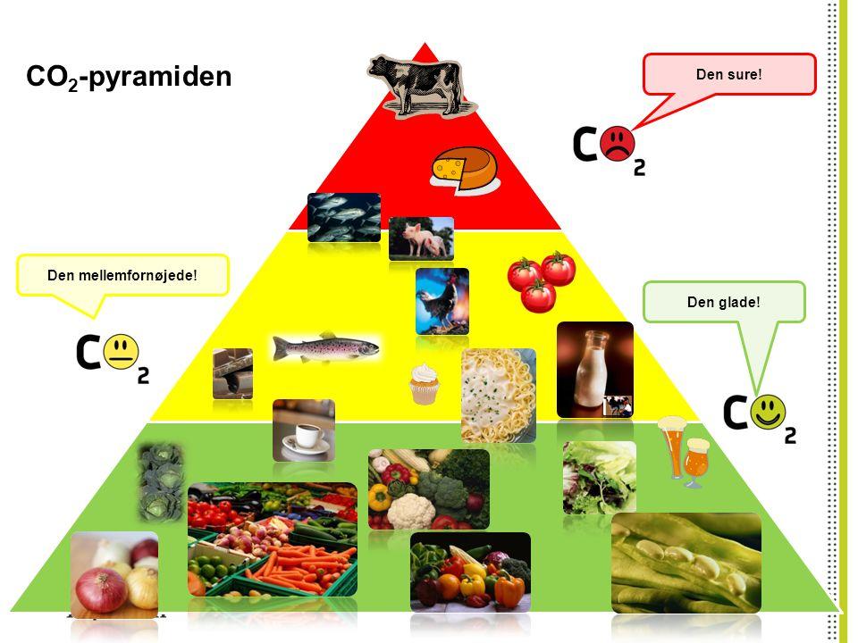 CO2-pyramiden Den sure! Den mellemfornøjede! Den glade!