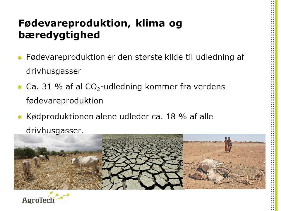 Fødevareproduktion, klima og bæredygtighed