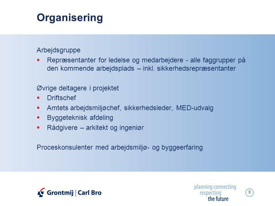 Organisering Arbejdsgruppe