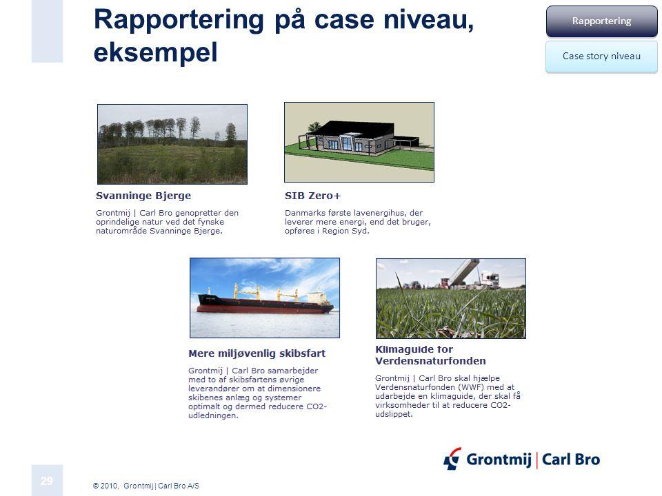 Rapportering på case niveau, eksempel
