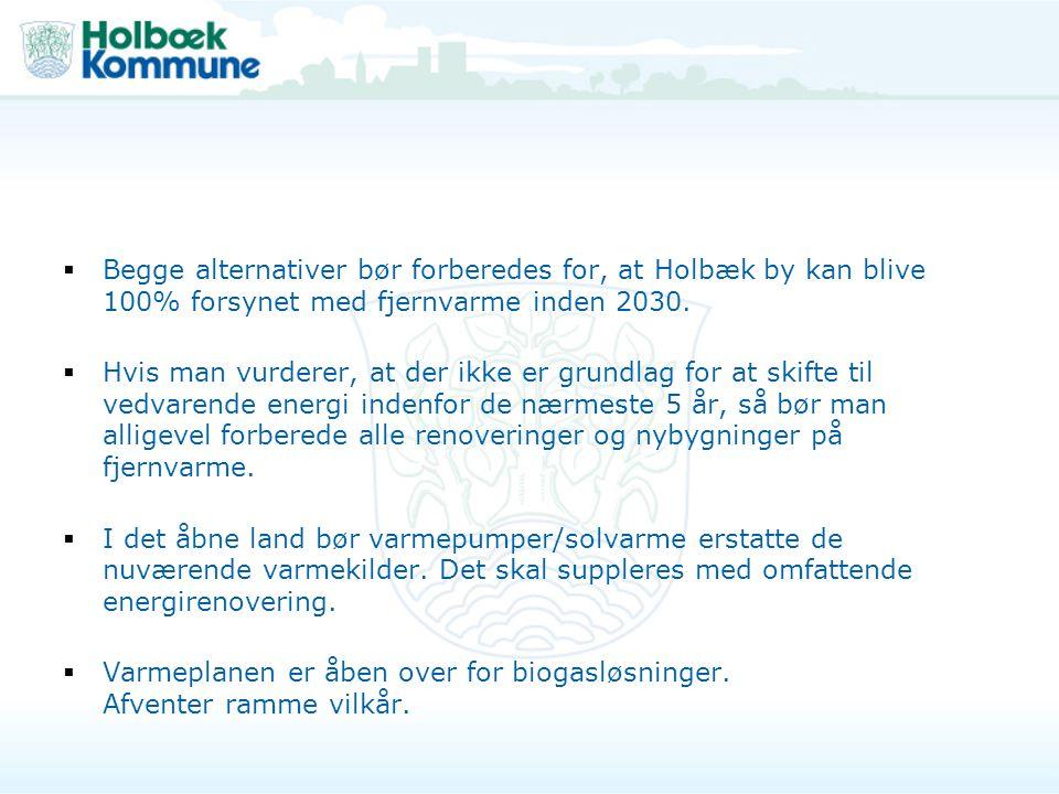 Begge alternativer bør forberedes for, at Holbæk by kan blive 100% forsynet med fjernvarme inden 2030.