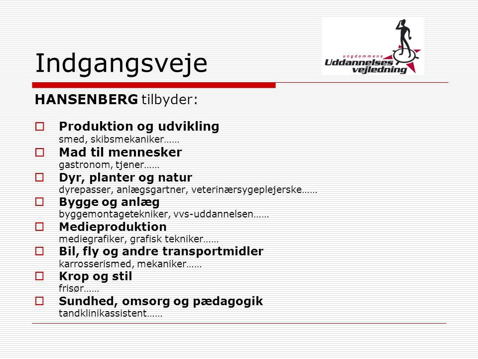 Indgangsveje HANSENBERG tilbyder: Produktion og udvikling