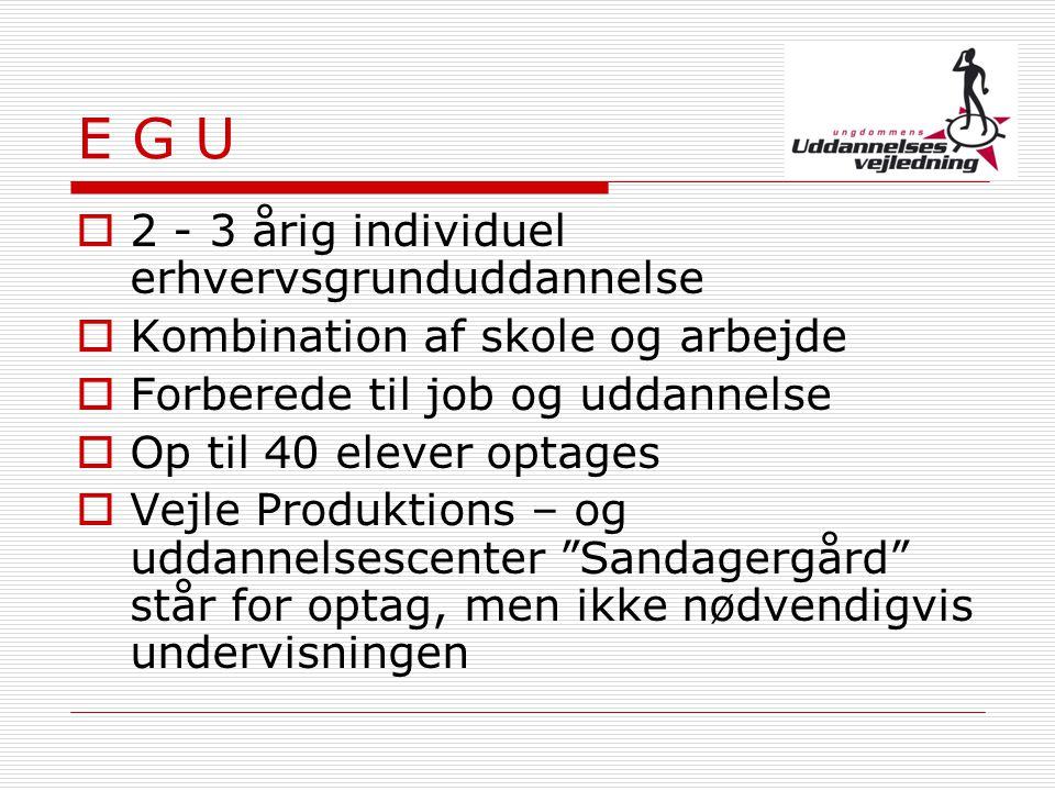 E G U 2 - 3 årig individuel erhvervsgrunduddannelse
