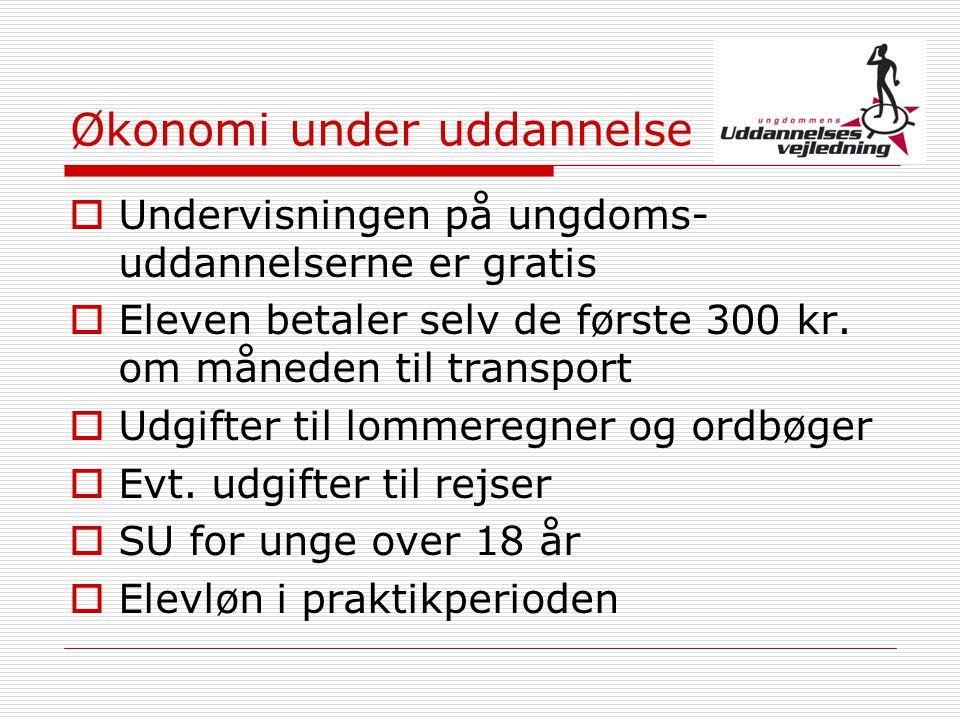 Økonomi under uddannelse