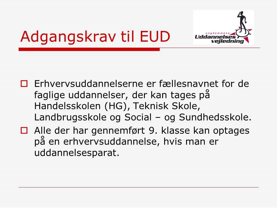 Adgangskrav til EUD