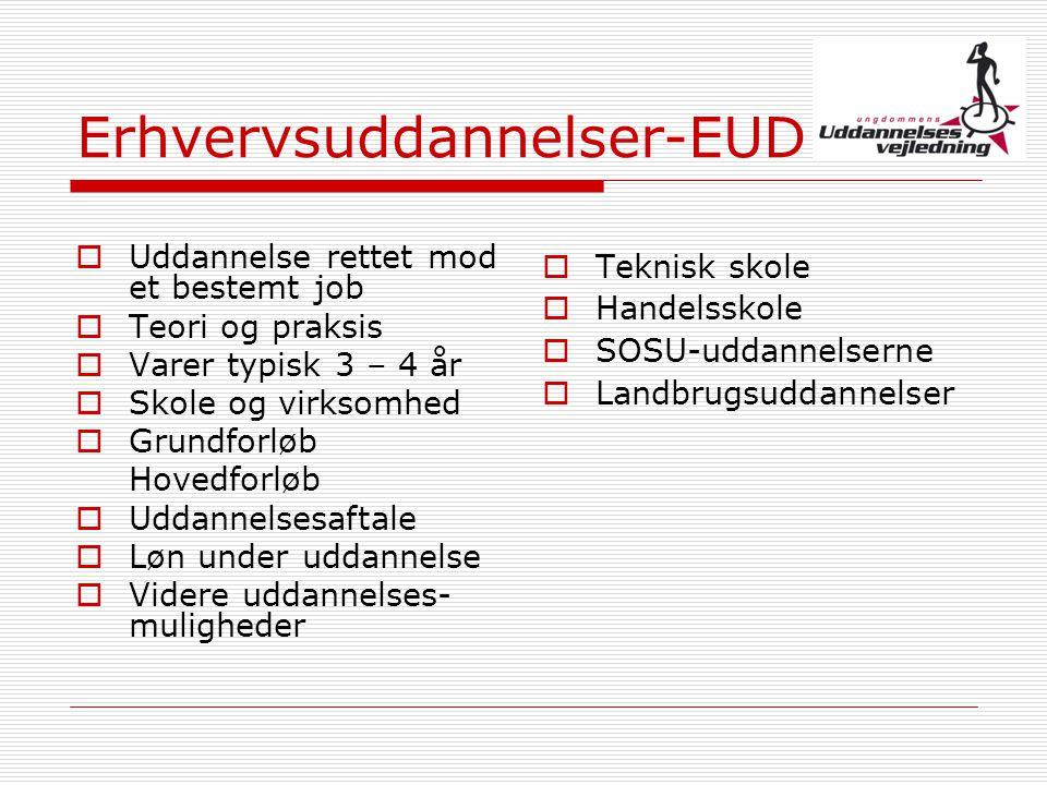 Erhvervsuddannelser-EUD