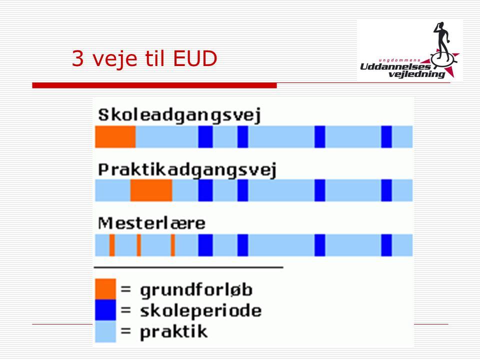 3 veje til EUD