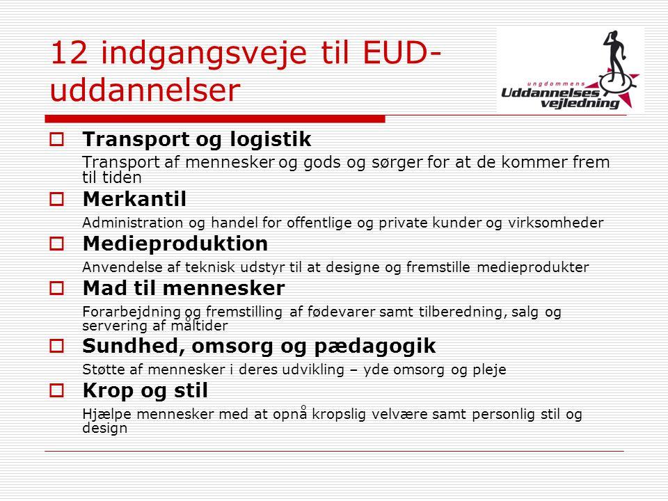 12 indgangsveje til EUD-uddannelser