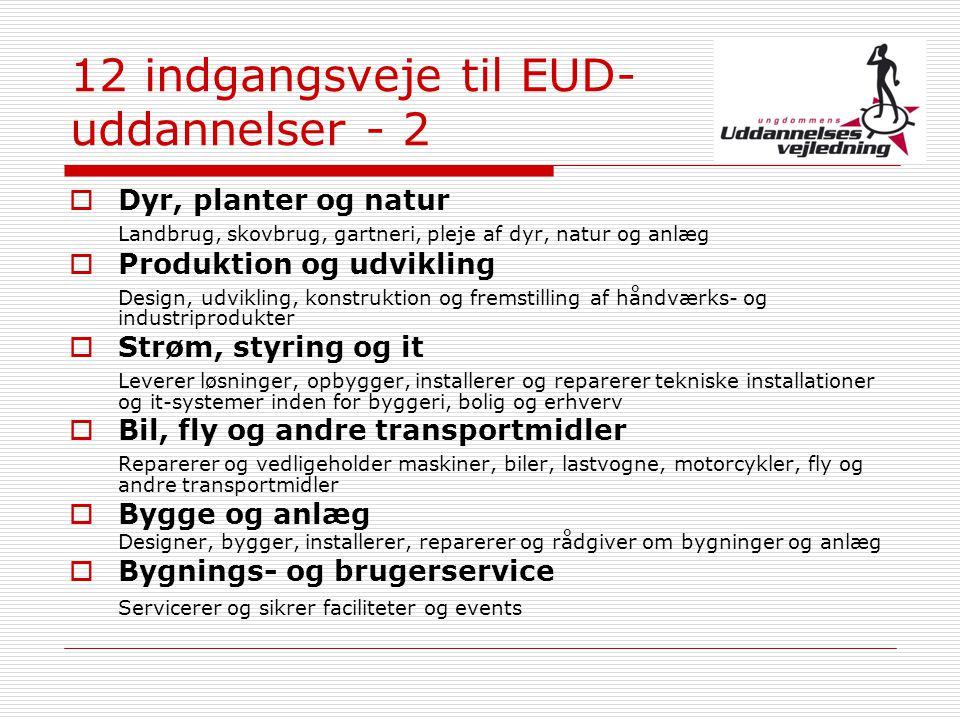 12 indgangsveje til EUD-uddannelser - 2