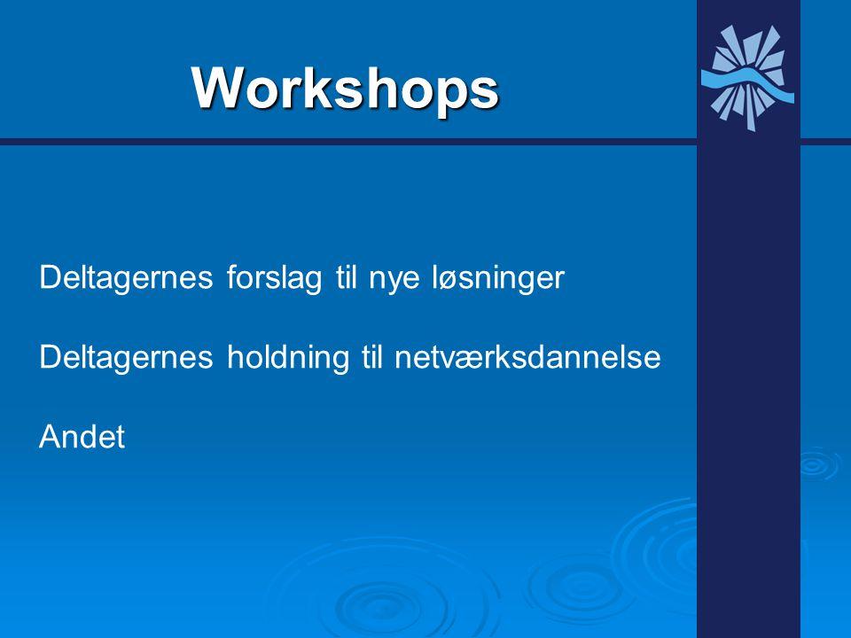 Workshops Deltagernes forslag til nye løsninger