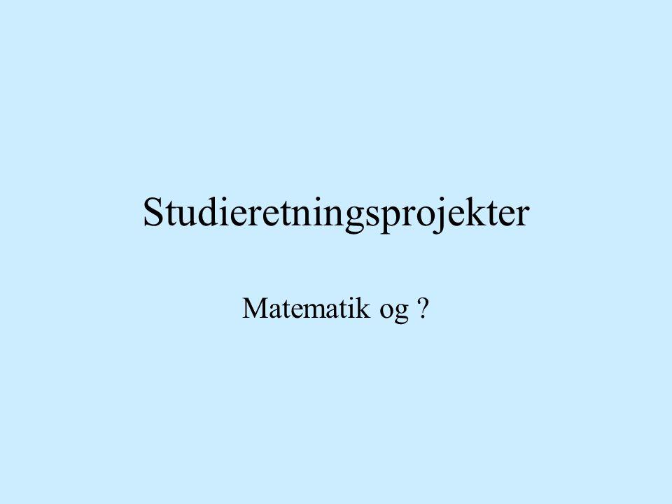 Studieretningsprojekter