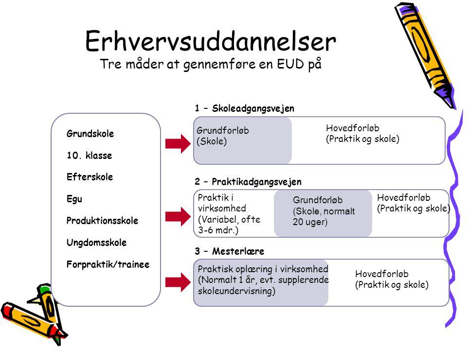 Erhvervsuddannelser Tre måder at gennemføre en EUD på