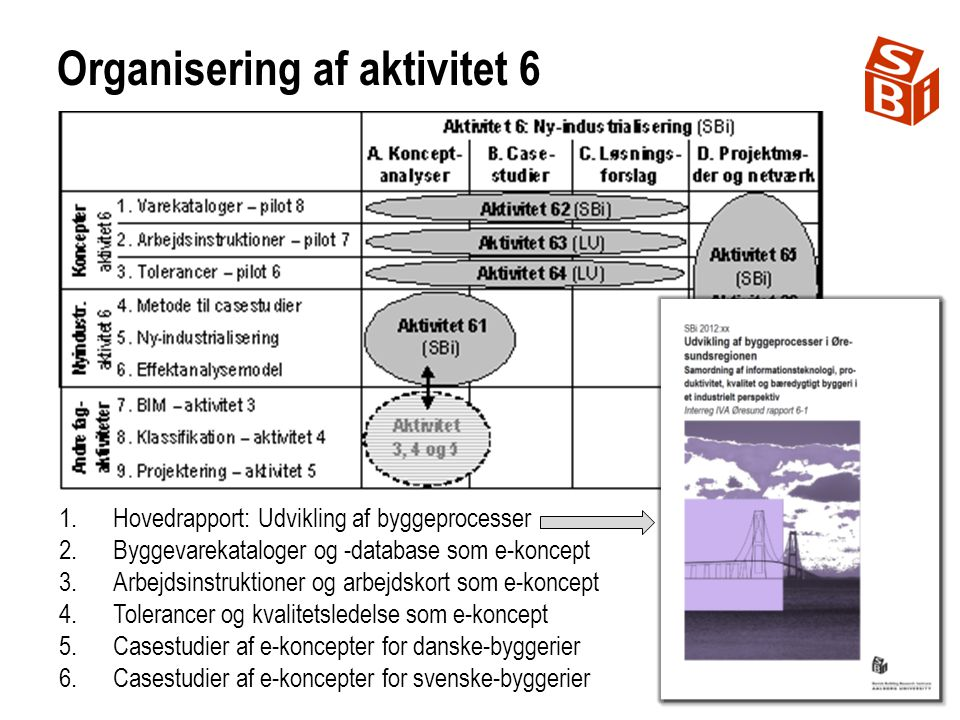 Organisering af aktivitet 6