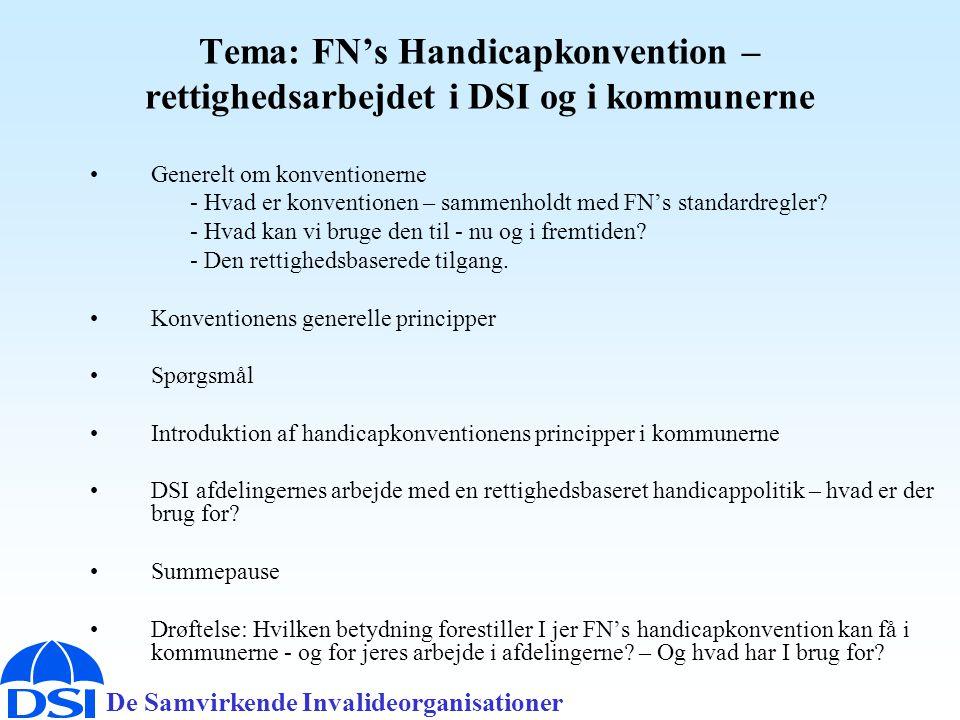 Tema: FN's Handicapkonvention – rettighedsarbejdet i DSI og i kommunerne