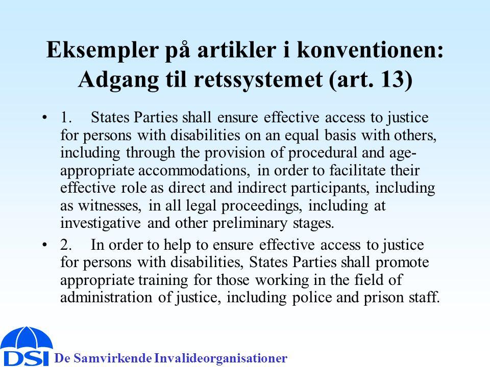 Eksempler på artikler i konventionen: Adgang til retssystemet (art. 13)