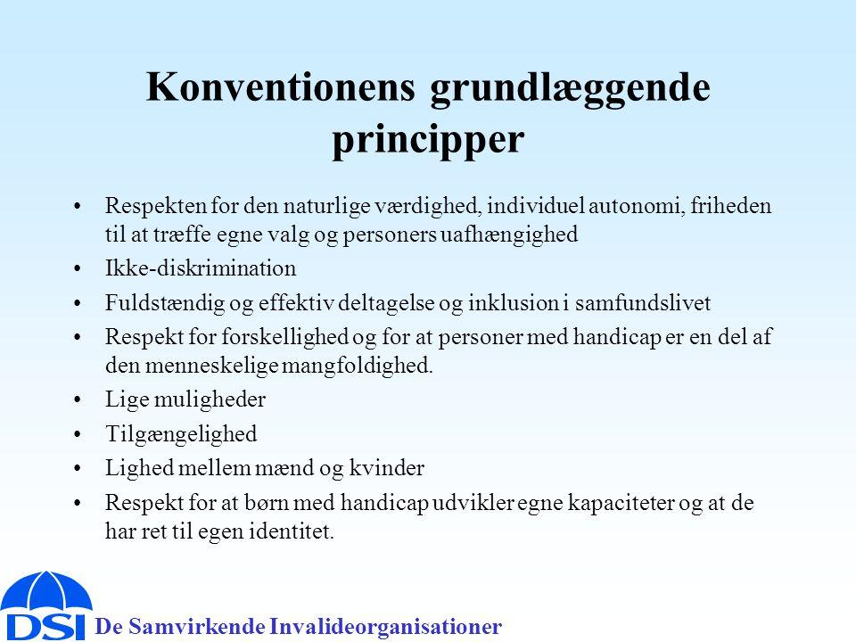 Konventionens grundlæggende principper